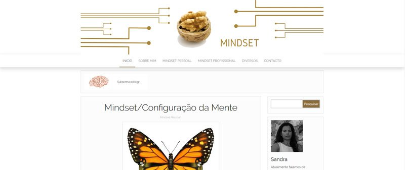 MBA em Marketing Digital mindset-topimage MBA em Marketing Digital