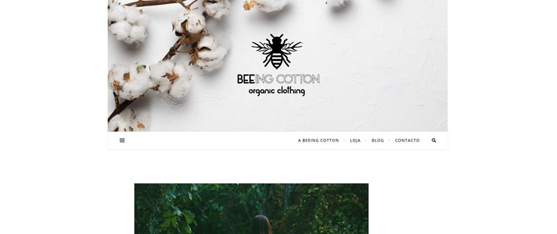 MBA em Marketing Digital BeeingCotton MBA em Marketing Digital